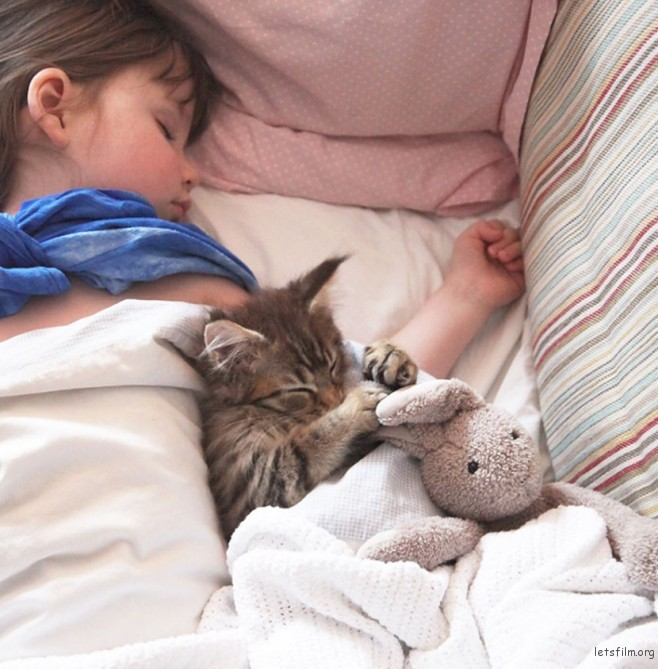 thula-therapy-cat-autistic-artist-iris-grace-3-830x845-658x669
