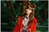 投稿作品No.3243 聖誕小鹿