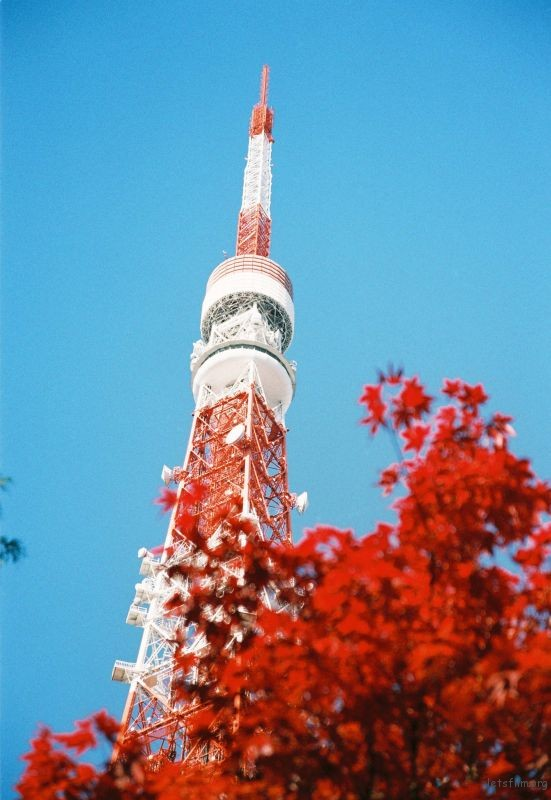 Nikon F80 摄于东京 东京塔下