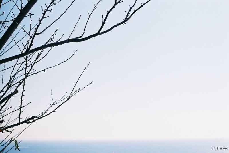太平洋太平洋,展望台的风很大,但是面前的海真的好美。