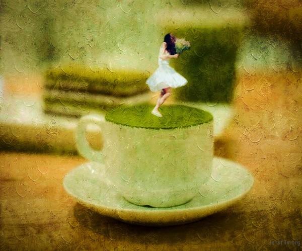 站在抹茶上跳舞