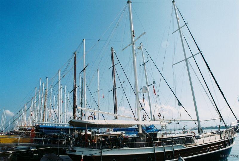 白色的桅杆,會在出發時鼓起風帆。