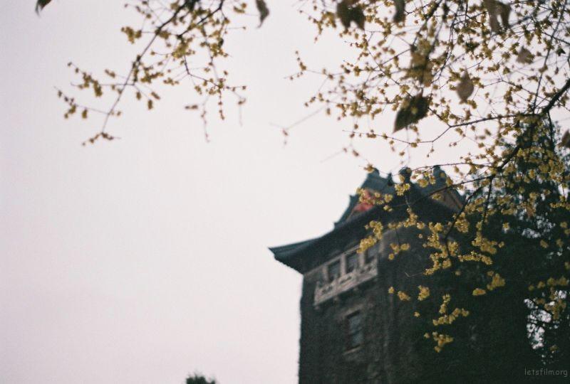 南京大学鼓楼校区