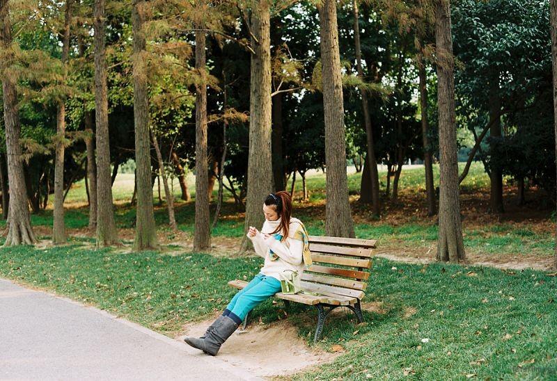 深秋滨江森林公园