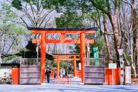 京都・下鸭神社(上)