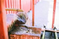 京都・下鸭神社(下)