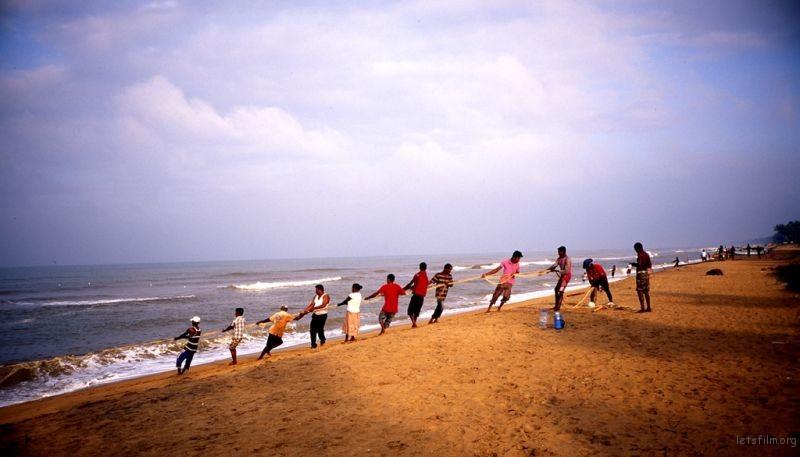一早跑去海边沙滩,有很多印度人在哪里捕鱼,一张超级大网,一群人在拉网。