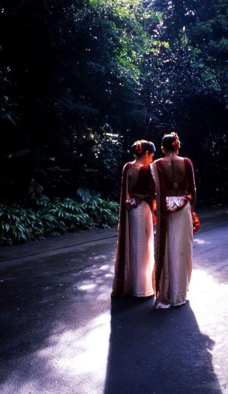 在康提植物园遇到的盛装伴娘。
