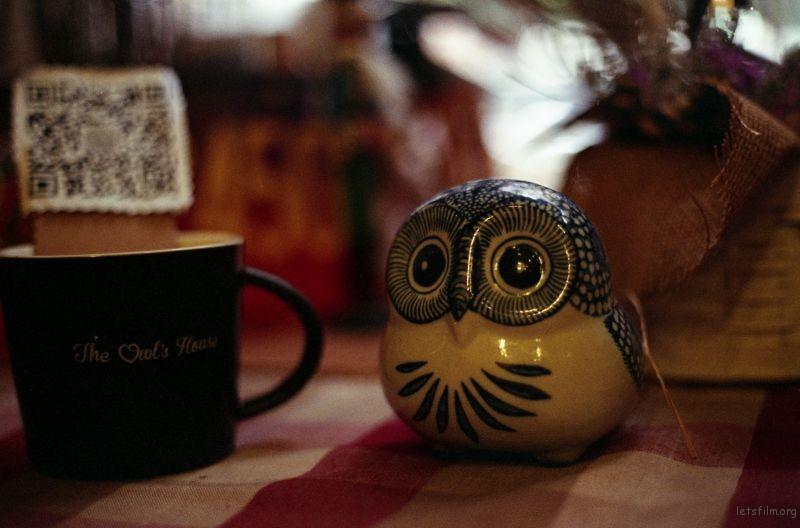 猫头鹰咖啡1