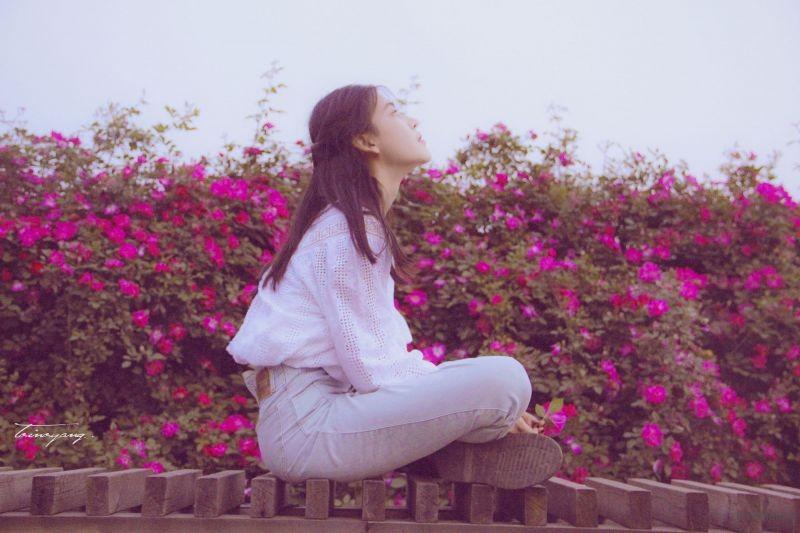 花 (7)