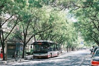 投稿作品No.4843 六月北京