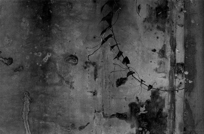 Untitled-107