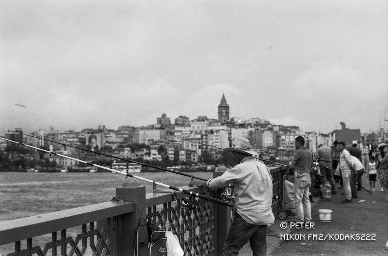 加拉太大桥的钓客