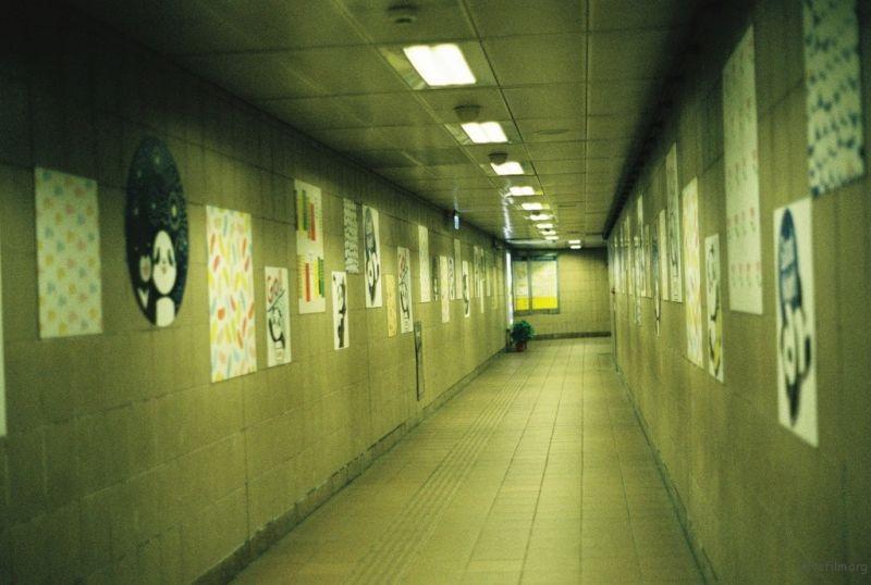 上面吹着呼呼的风 闭塞在走廊上听见自己大笑的回音
