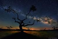 15张天文摄影图告诉你宇宙到底有多美