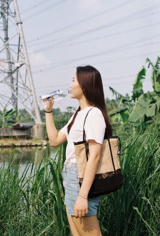 凤梨1 (35)