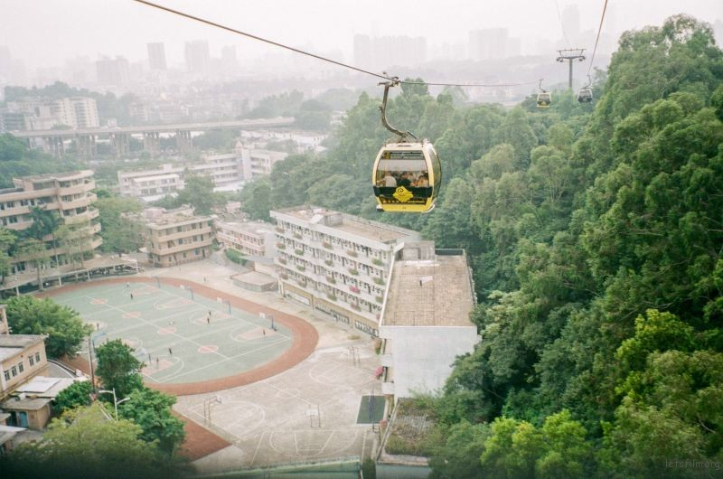 Zhejiang guliang