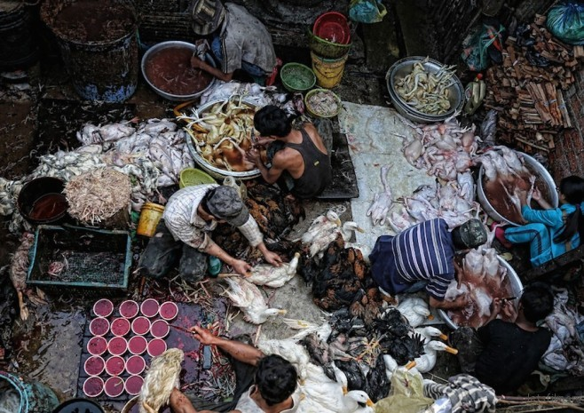 """Poultry Prepared for Market"" by Peter Graney ─ Cambodia (柬埔寨)"