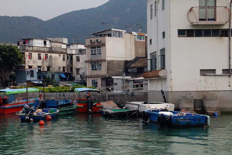 在这里,与现代化的香港都市形成鲜明对比,仿佛置身于世外桃源。
