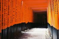 夏日终焉——何日再逢君 Vol.6 京都伏见稻荷大社