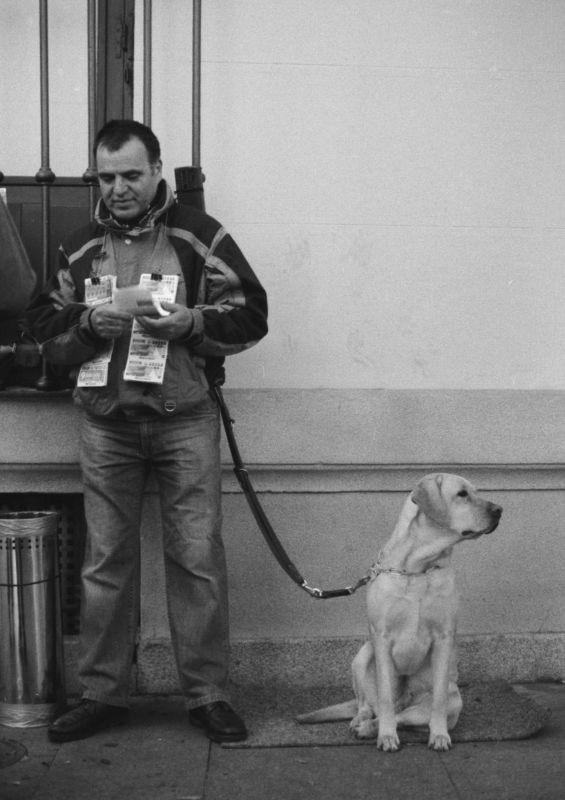 卖彩票的盲人和狗,马德里