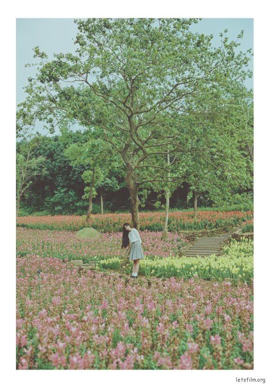 青秀山 (2)