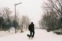 [7054] 北方的冬天