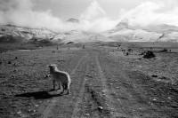 在西藏走过的那些地方