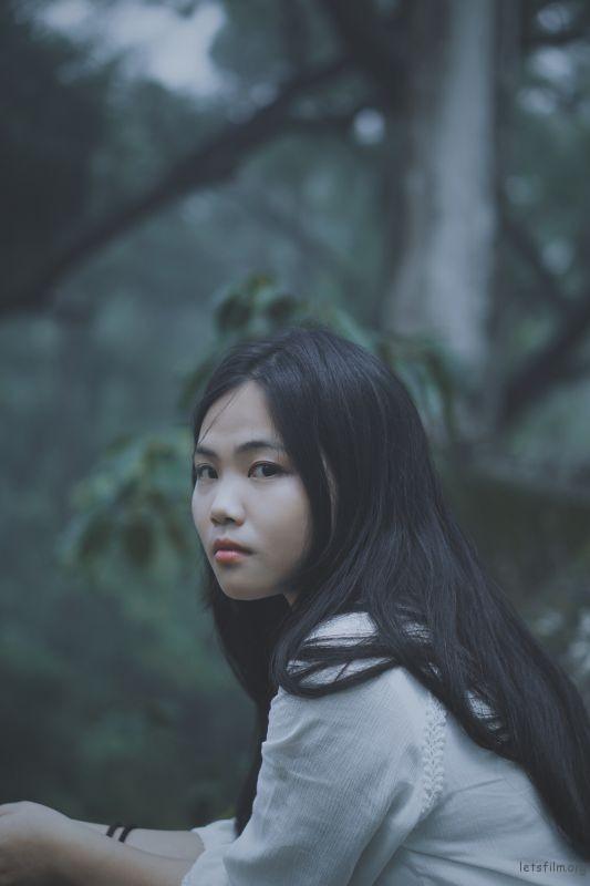 绿野仙踪7