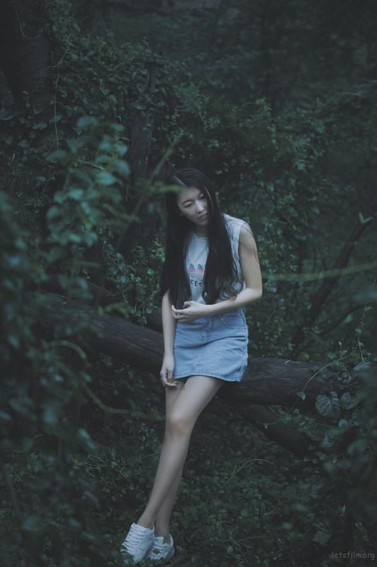 绿野仙踪4