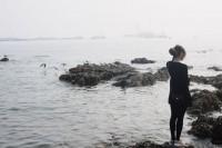 [7183] 冷与暖,海鸥与海。
