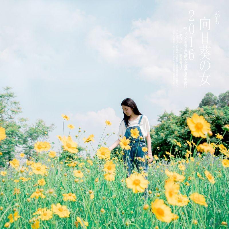 [7286] 向日葵女孩