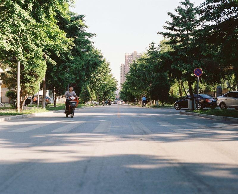 东北大学-4
