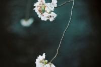 [7869] 东京四月的樱花