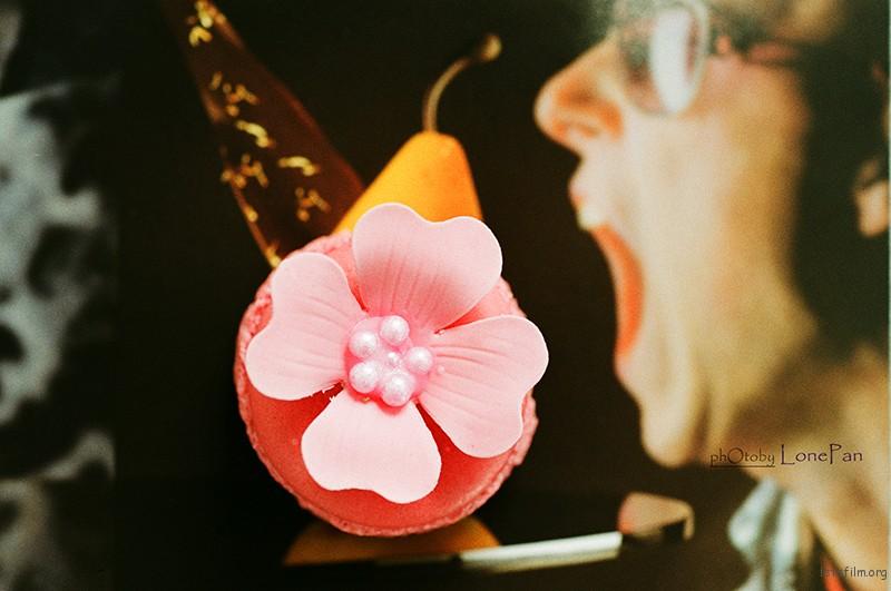 Ikebana Macaroon