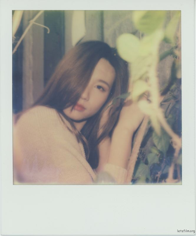 Polariod-10