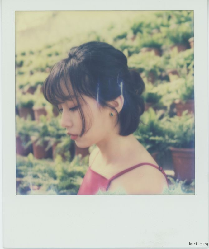 Polariod-12