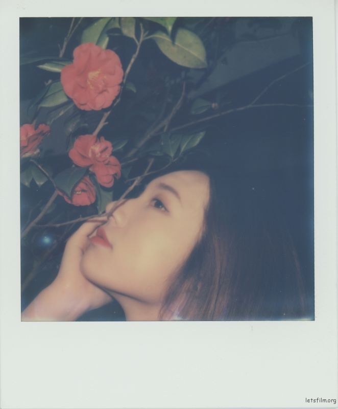 Polariod-2