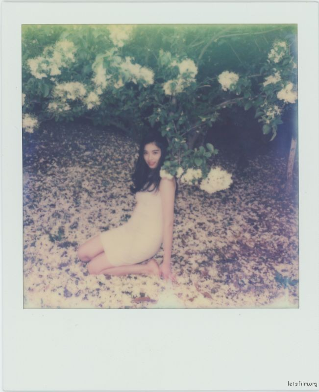 Polariod-9