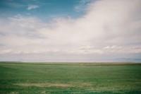 [8201] 从此,看山想你,看水想你,至每个春夏秋冬。