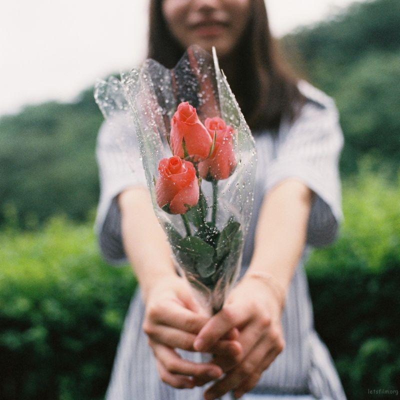 [8085] 你举着一束花等着有人带你去流浪 | 胶片的味道