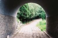 [8318] 北京之夏色