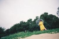 [8095] 雨季