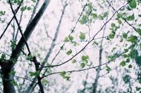 [8034] 高三的最后一个春天