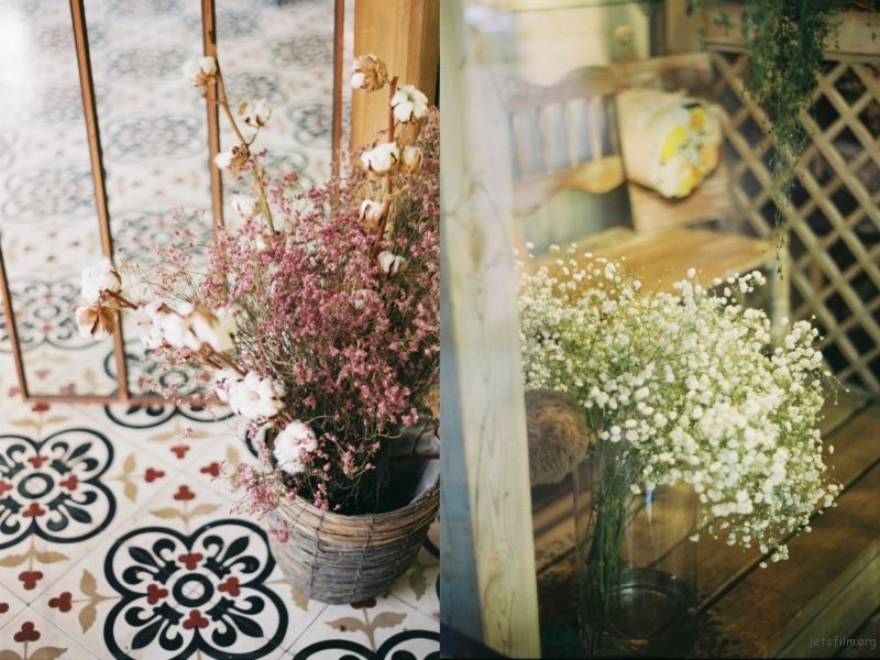 Collage_Fotor4_Fotor