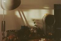 [8634] 夏日,余光,懒猫,老胶片