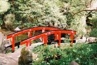[8447] 假装在日本