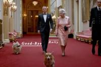 不再让心爱的柯基犬受苦:英女王 Elizabeth 难过地做出这项决定…
