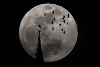 明晚的超级月亮,你准备好了么?