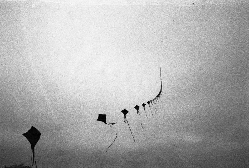 long-kite